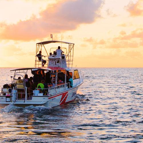 Sunbreeze Suites Fishing Tour