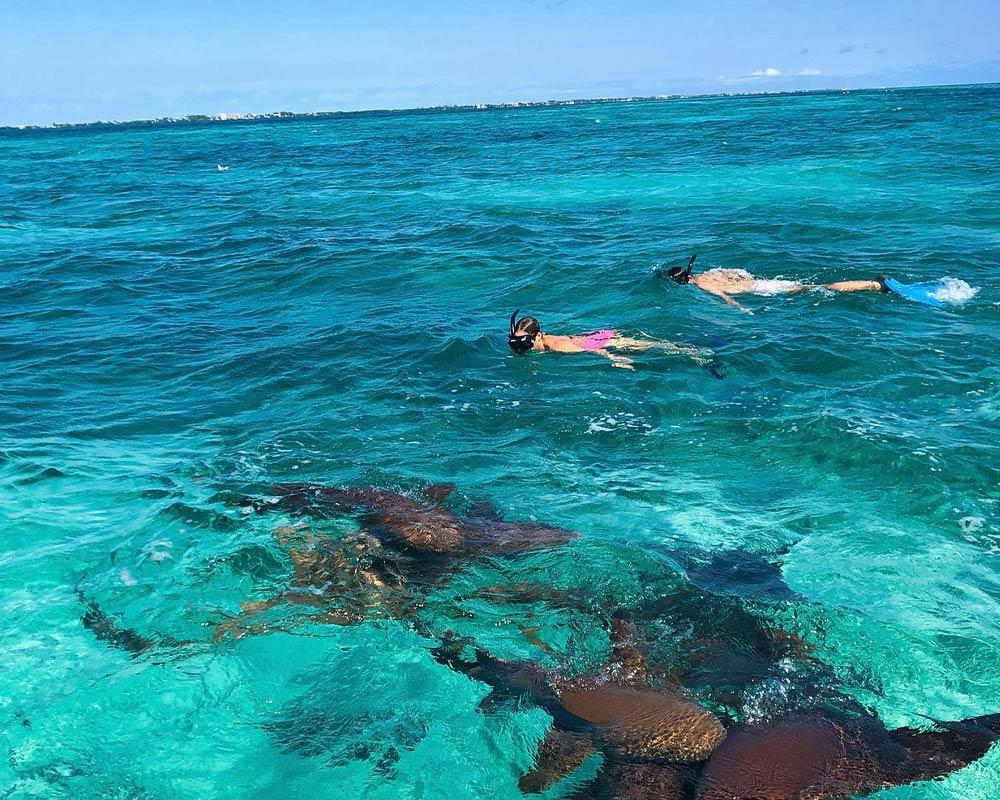 San Pedro Belize Snorkeling Tours